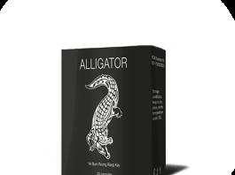 Alligator - mua ở đâu? Có tốt không ? Giá bao nhiêu? 2019 - chính hãng